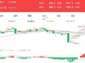 12月16日期市收评:商品期货多数上涨 铁矿石收复千元整数关口</a>